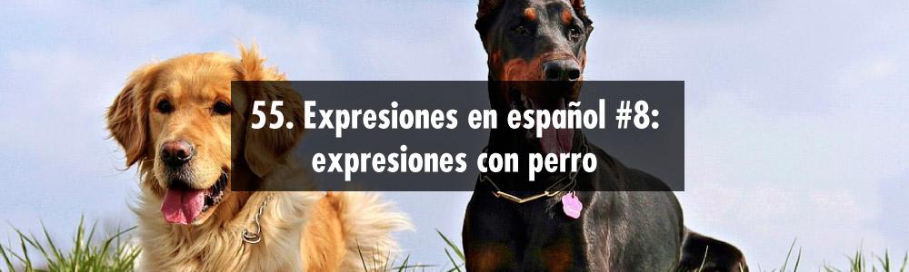 expresiones perro español